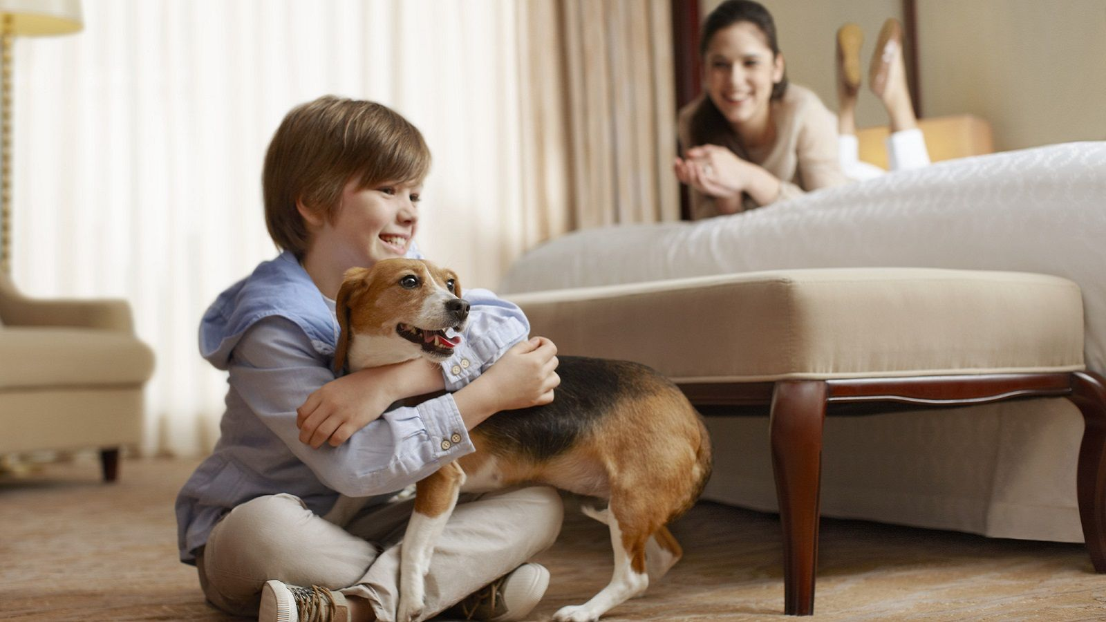 Pet-friendly hotels in Stamford